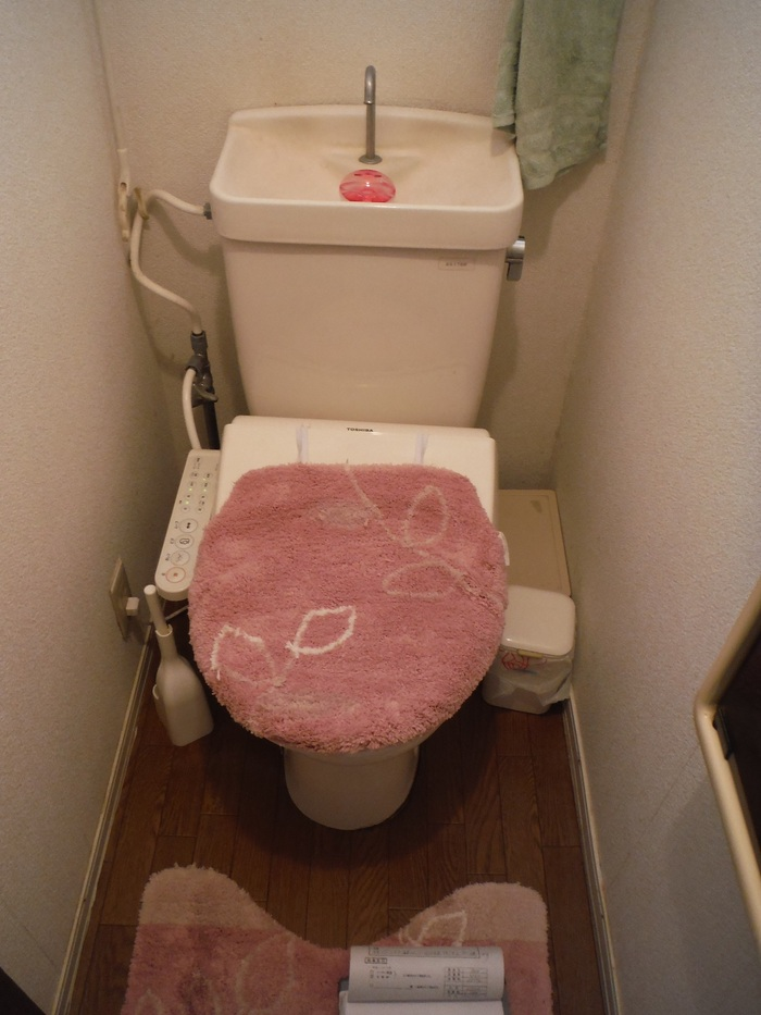 増築 ~ トイレ工事_d0165368_7112647.jpg