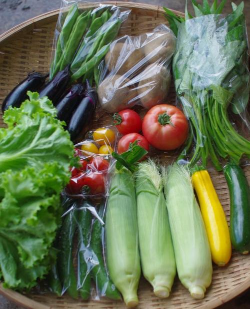 今週の野菜セット(9/1~9/5着)_c0110869_13181949.jpg