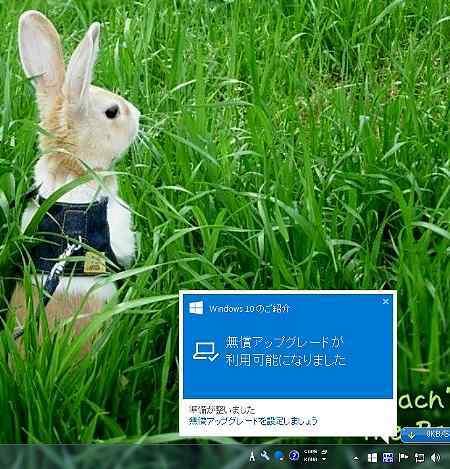 b0326613_20160071.jpg