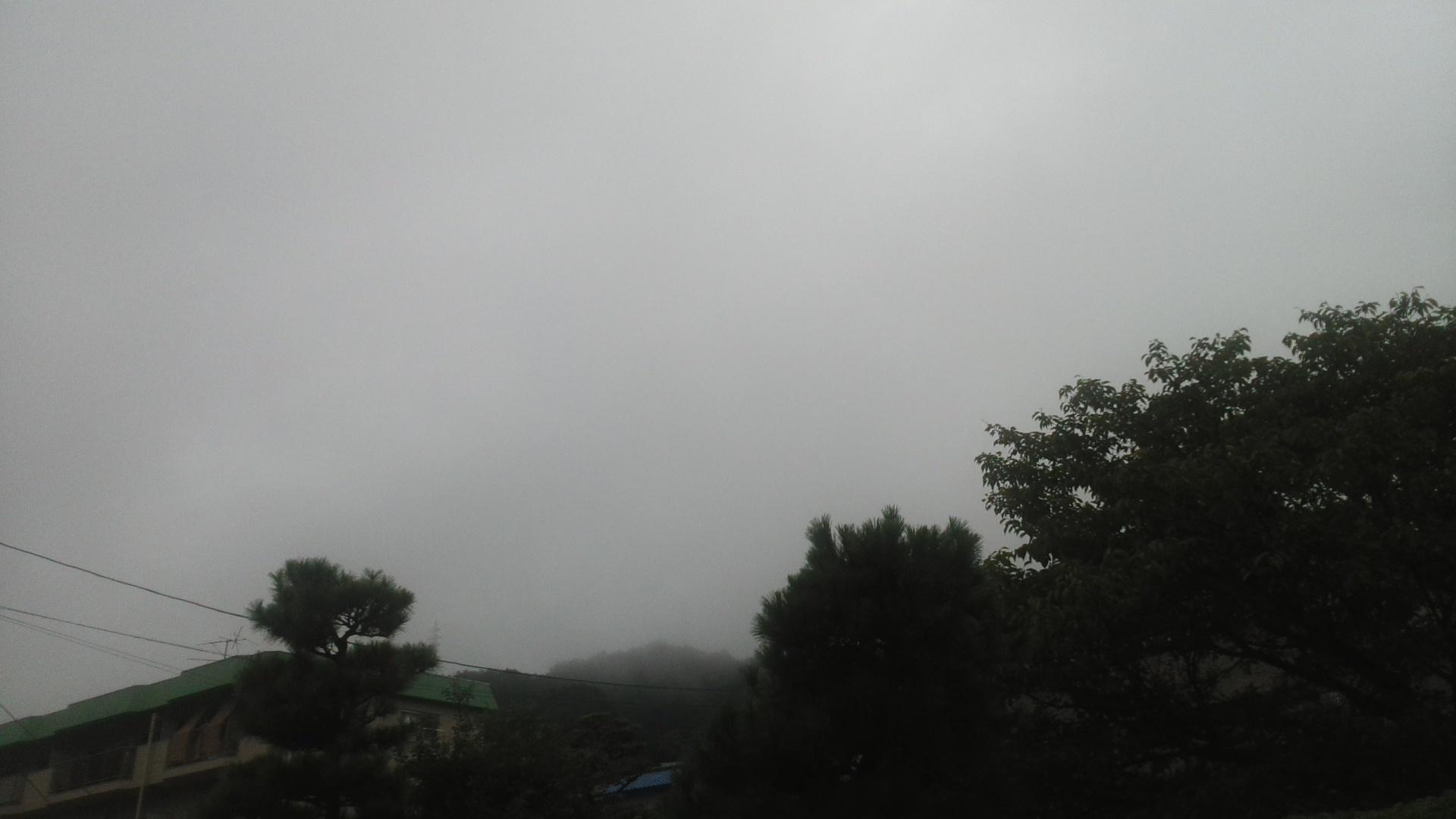 大雨警報です!警戒を!_e0094315_07082354.jpg