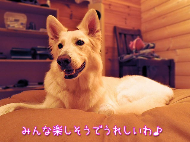 お山で酒池モフりん再び_c0062832_117465.jpg
