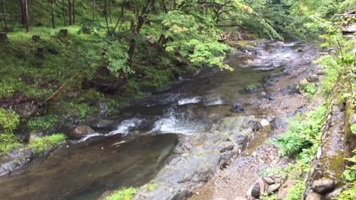 週末は京都へ…美山荘③_e0326573_08281664.jpg