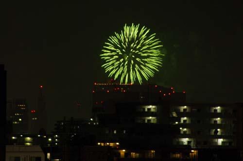 我が家の屋上 東京スカイルーフで見たこと_f0211178_12581064.jpg
