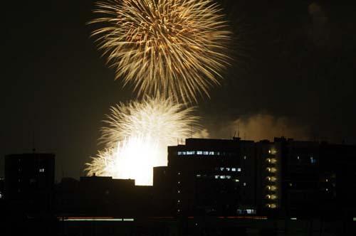 我が家の屋上 東京スカイルーフで見たこと_f0211178_1258272.jpg