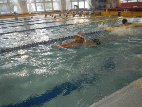上手に泳げるかな?_b0286596_18412159.jpg