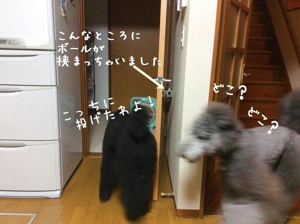 e0333910_15545024.jpg