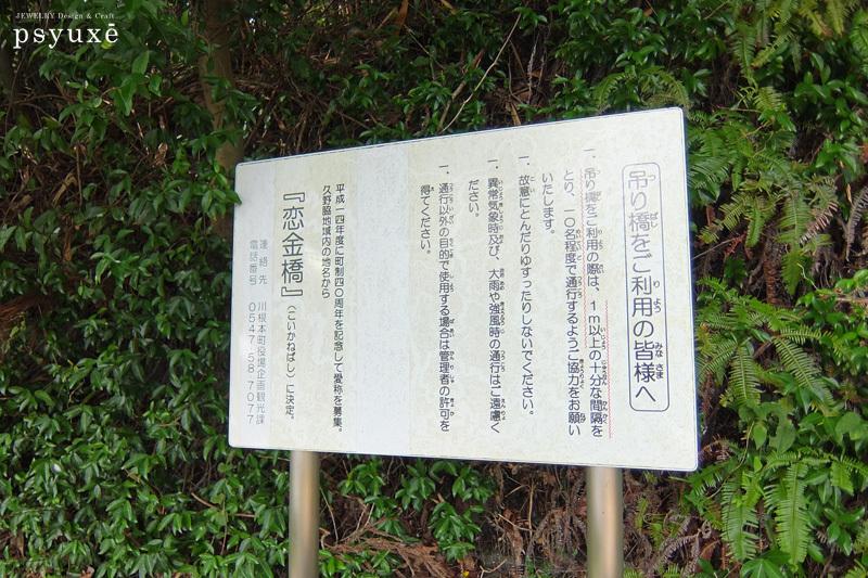 久野脇橋*恋金橋を渡る_e0131432_16265828.jpg
