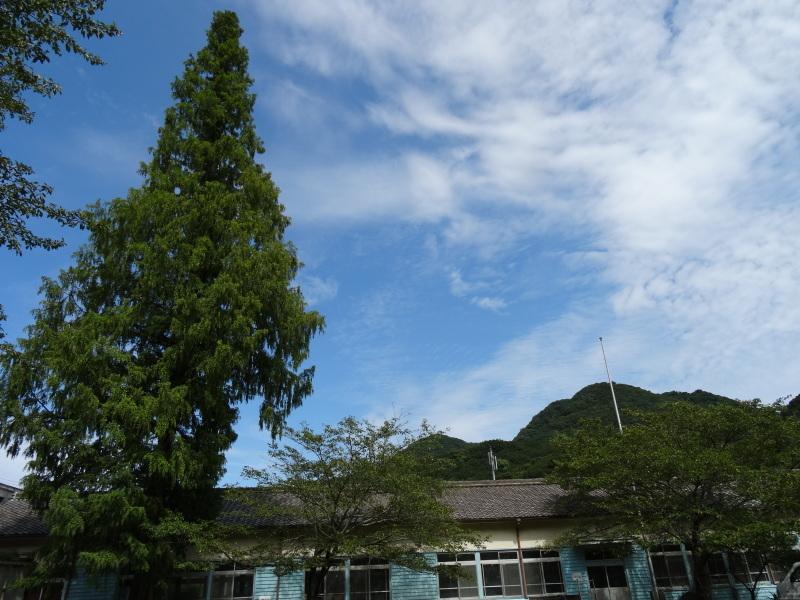 淡輪小学校2年生担任の先生の遠足下見 in 孝子の森     by     (TATE-misaki)_c0108460_23170368.jpg