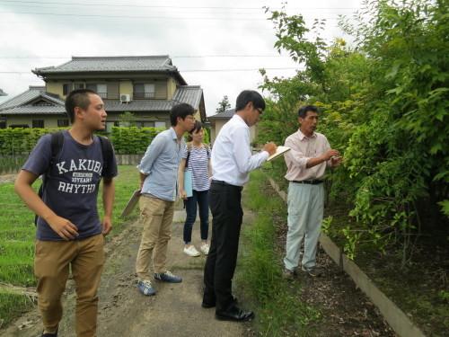 千代田農園_f0324766_14174406.jpg