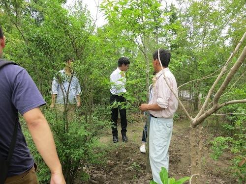 千代田農園_f0324766_14174857.jpg
