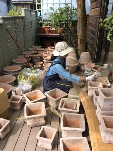 東南アジアの植木鉢の工場見たいですが、ここは、アナーセン_b0137969_11242446.jpg