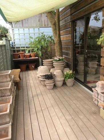 東南アジアの植木鉢の工場見たいですが、ここは、アナーセン_b0137969_11270209.jpg