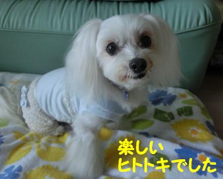 b0193480_15554115.jpg