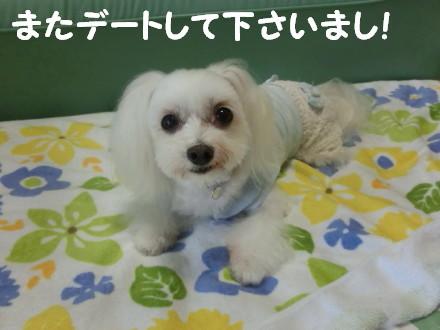 b0193480_1653730.jpg
