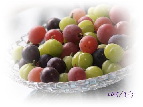 カラフルな葡萄たち_c0026824_9431018.jpg
