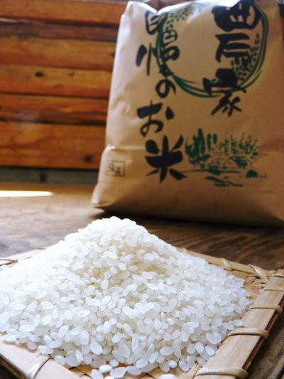七城米 長尾農園 美しすぎる田んぼにお米の花が咲きました(2015年)_a0254656_1754851.jpg