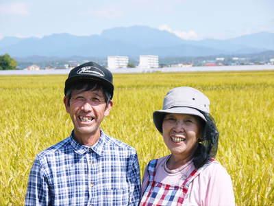 七城米 長尾農園 美しすぎる田んぼにお米の花が咲きました(2015年)_a0254656_18571199.jpg