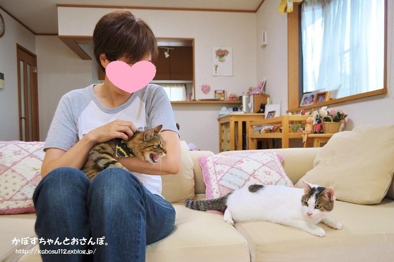 ぎんなん VS 春太郎_a0126590_21141362.jpg