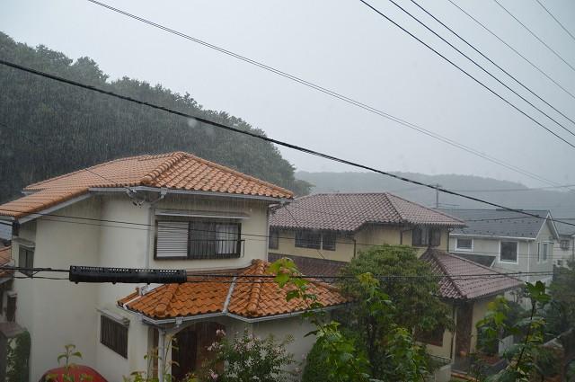 すっごい、雨でした。_c0124100_23105443.jpg