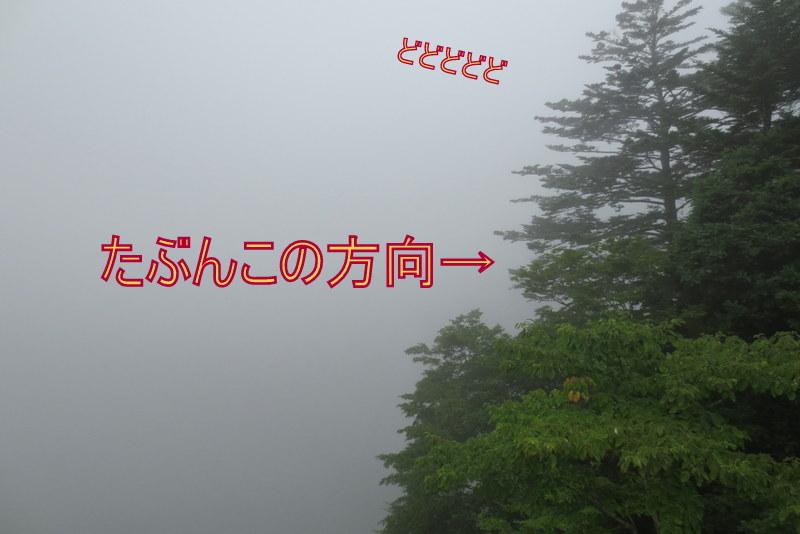 f0224506_22103001.jpg
