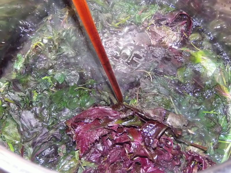 うちの畑の「赤じそシロップ」作り。_a0125419_18525643.jpg