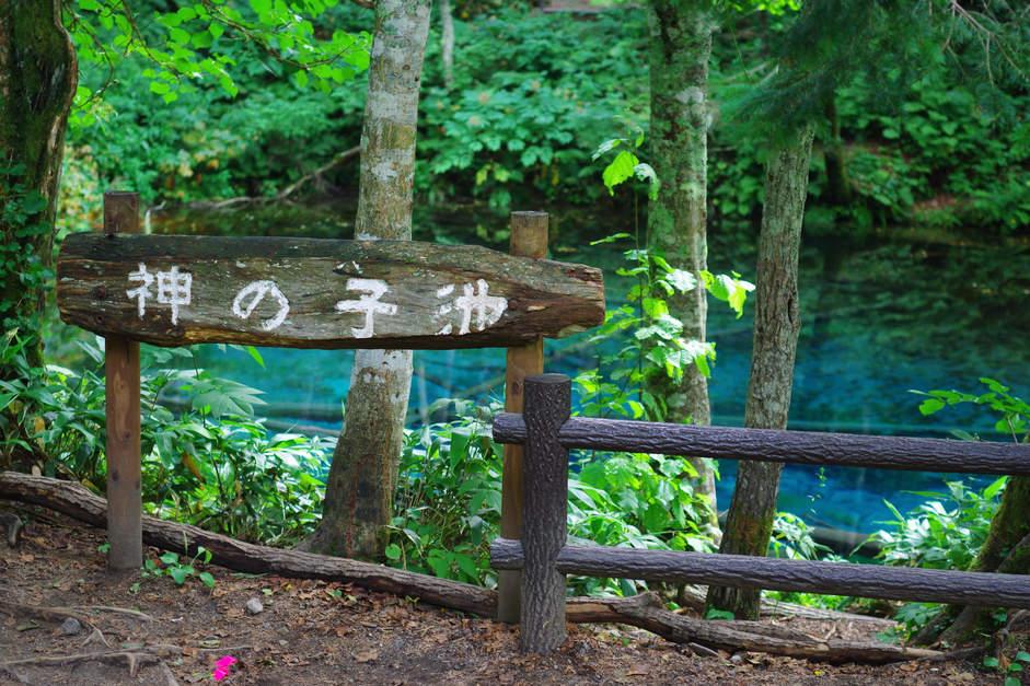 北海道旅 ④_a0249931_19233358.jpg