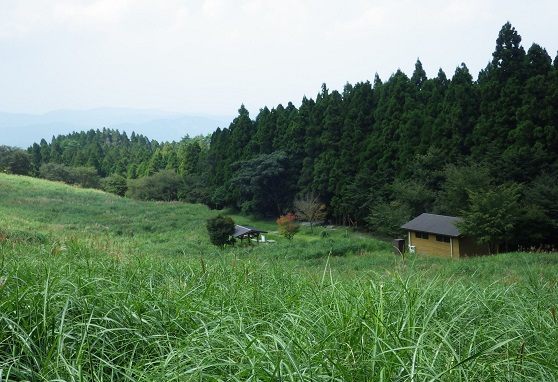 秋の風の英彦山_e0164643_2156216.jpg