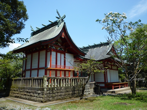 賀茂神社(6)賀茂大神は古出雲と水沼のハイブリットか_c0222861_21185028.jpg