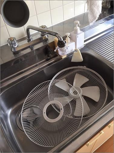 【 扇風機はキッチンで洗ってしまう 】_c0199166_3175154.jpg