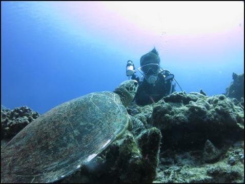 9月5日慶良間ダイビング&青の洞窟体験ダイビング_c0070933_20500049.jpg
