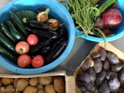 野菜が、野菜がアルベロベッロ!^^!_e0326953_16363420.jpg