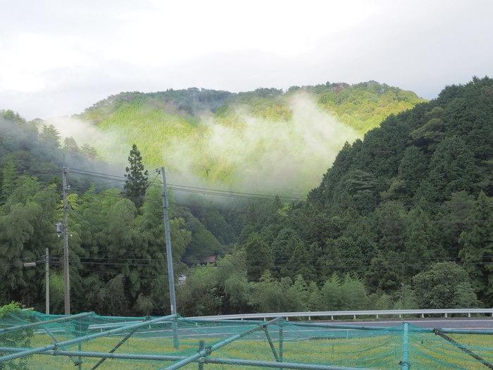 向かいの山も日が射した_c0116915_23495936.jpg