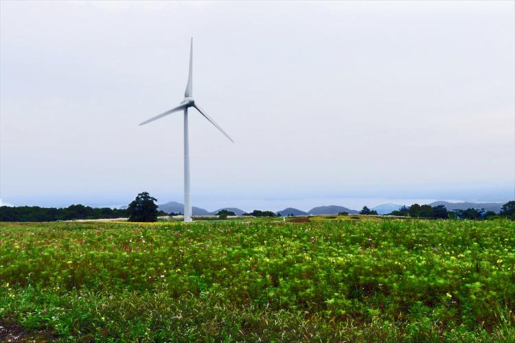 福島県郡山市湖南町 「風の布引高原」_d0106628_16585469.jpg
