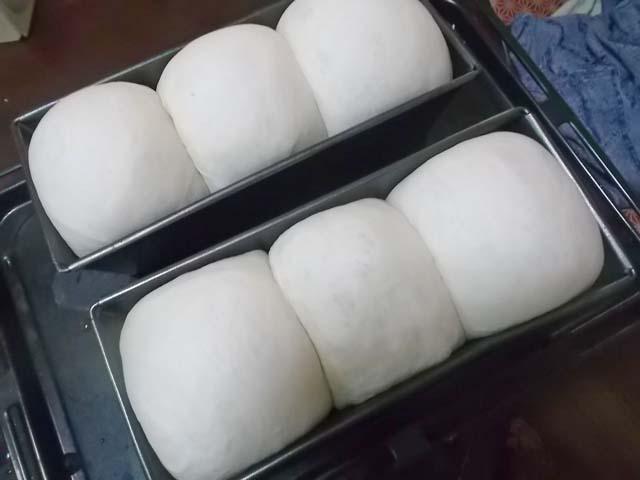 サンドイッチ用山型食パン★冷蔵庫の掃除_f0019498_1031571.jpg