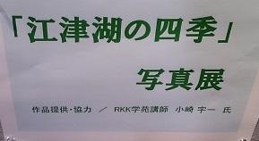 江津湖の四季 写真パネル展_b0228113_13503465.jpg