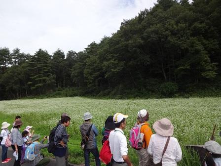 第14回『ふるさと岡山の森を訪ねる旅』_b0211845_19163787.jpg