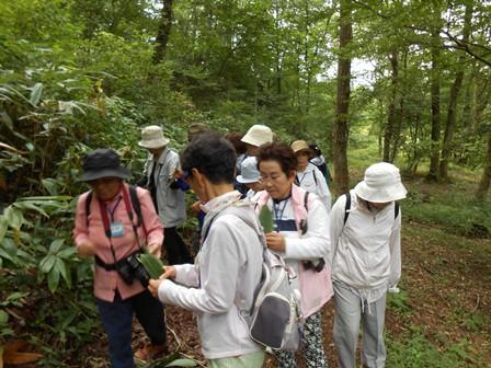 第14回『ふるさと岡山の森を訪ねる旅』_b0211845_19173570.jpg
