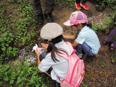 第14回『ふるさと岡山の森を訪ねる旅』_b0211845_19175024.jpg