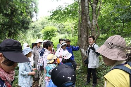 第14回『ふるさと岡山の森を訪ねる旅』_b0211845_1919477.jpg