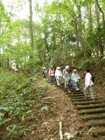 第14回『ふるさと岡山の森を訪ねる旅』_b0211845_19303353.jpg