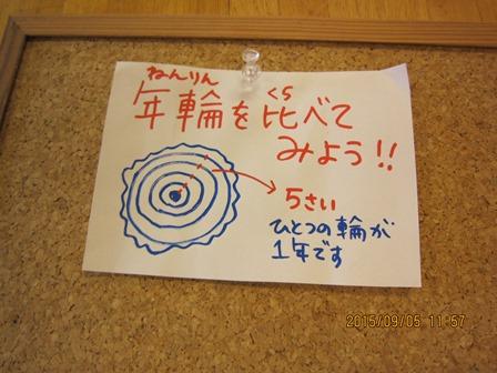 第14回『ふるさと岡山の森を訪ねる旅』_b0211845_1948780.jpg