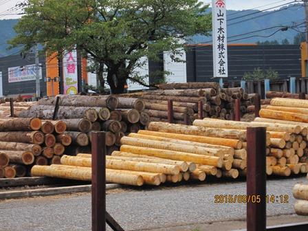 第14回『ふるさと岡山の森を訪ねる旅』_b0211845_2002418.jpg