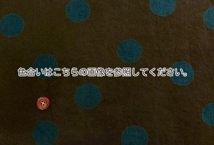 c0191852_5461934.jpg