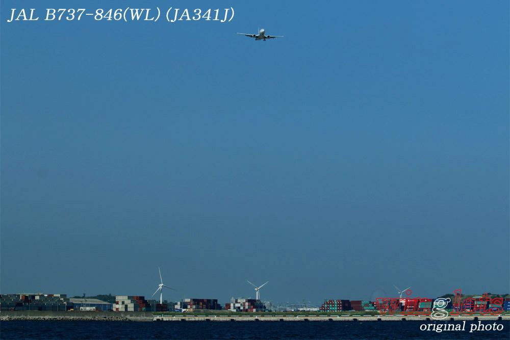 '15年 城南島・海浜公園レポート・・・JAL/JA341J_f0352866_22211842.jpg