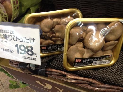キノコ大国、ニッポン_a0136671_22105177.jpg