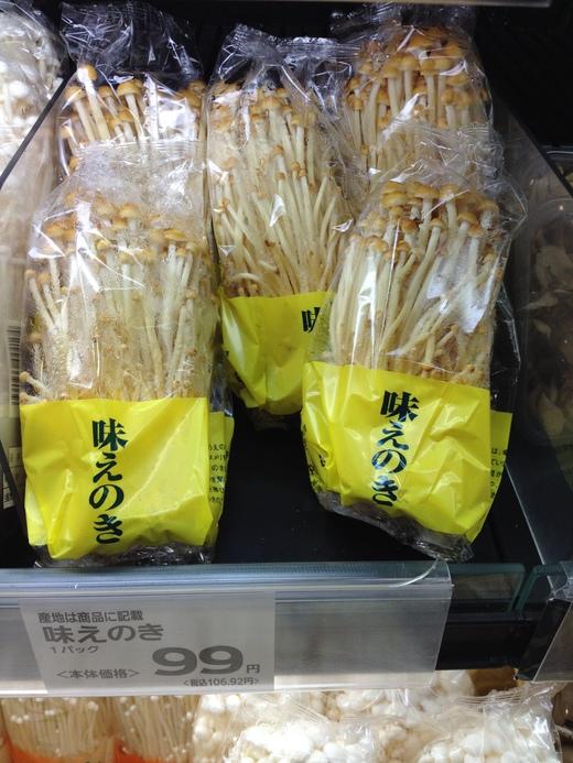キノコ大国、ニッポン_a0136671_2295356.jpg