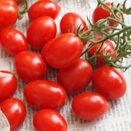 調理用トマト色々_a0292194_11412127.jpg