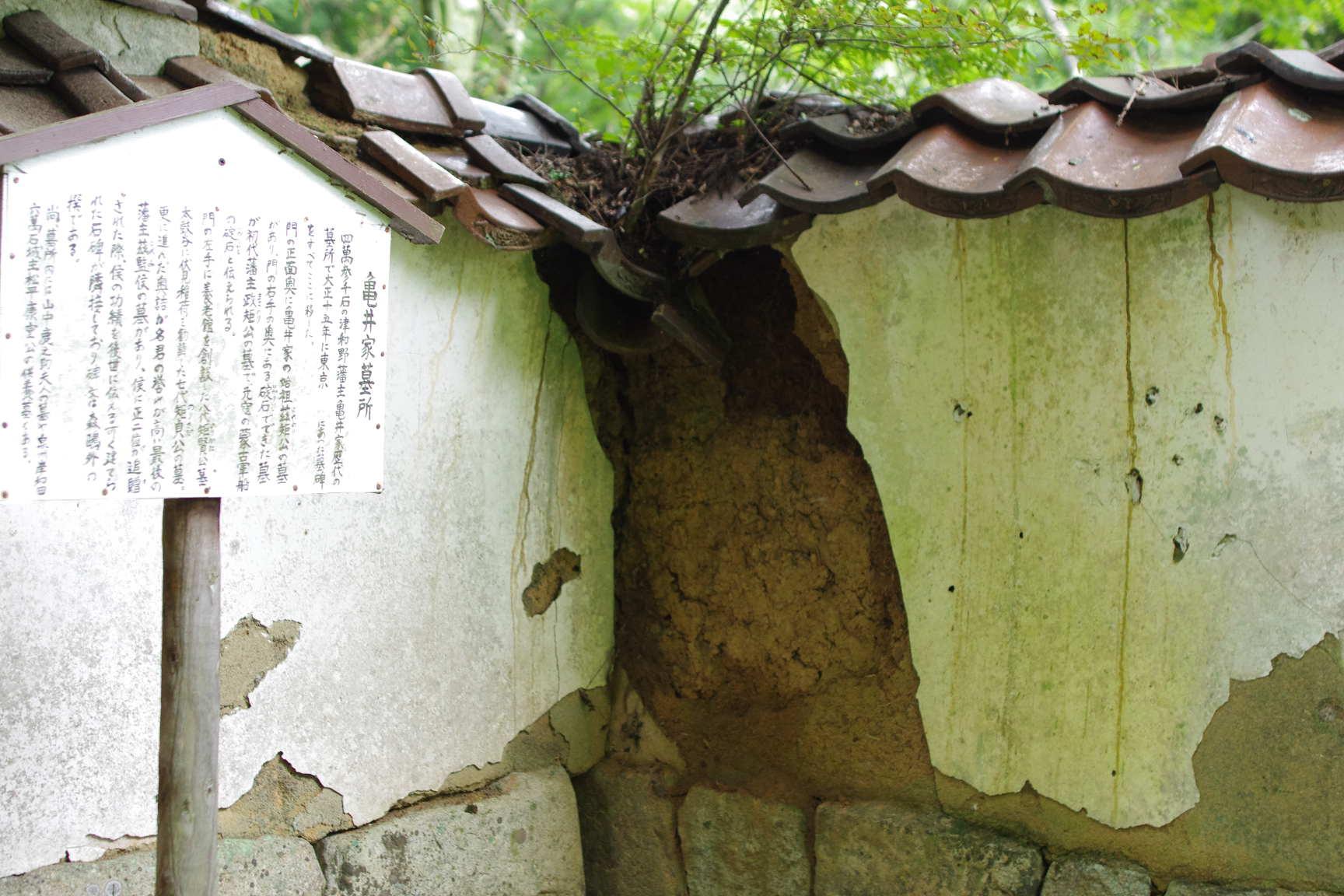 島根県 津和野町役場 つわの暮らし推進課・・・_c0192503_19223585.jpg