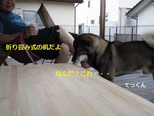 f0143123_83164.jpg