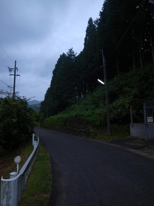 b0036636_2012151.jpg